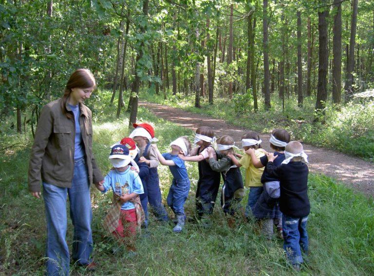Waldtrainer*innenausbildung